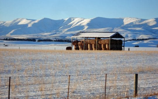 Central Otago Winter Photography Tour